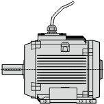 non-ventilated motor with fly leads