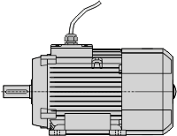 motor with fly leads